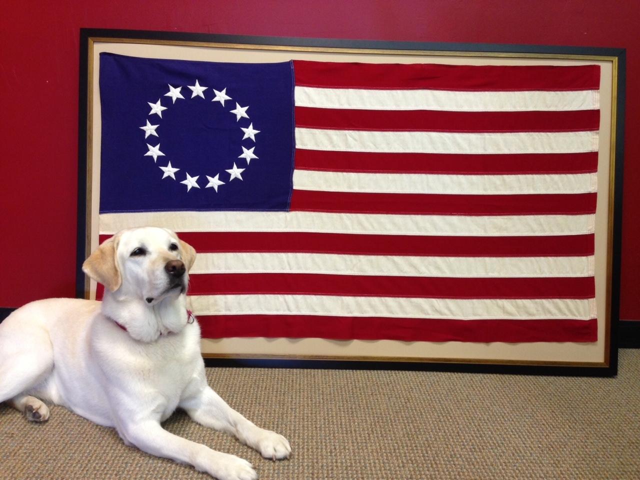 Framing The Flag